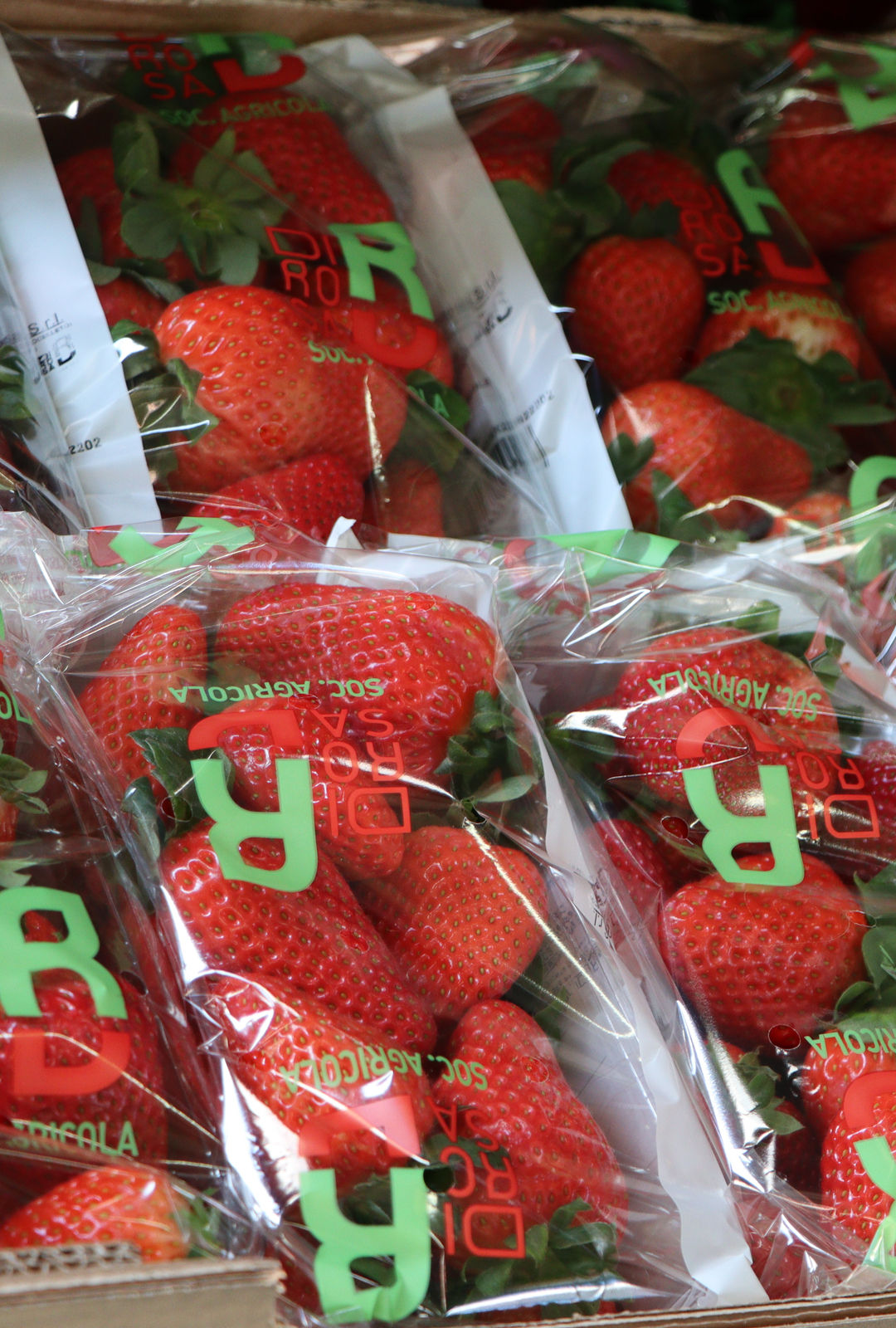 packaging-fragole