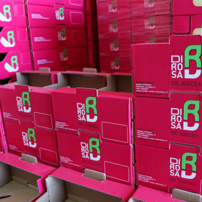 box-fruit-di-rosa-800x800