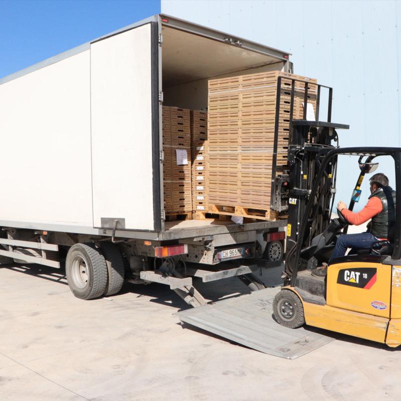 loading-fruit-unloading-800x800
